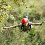 Carrick on Shannon Zip Line Stag